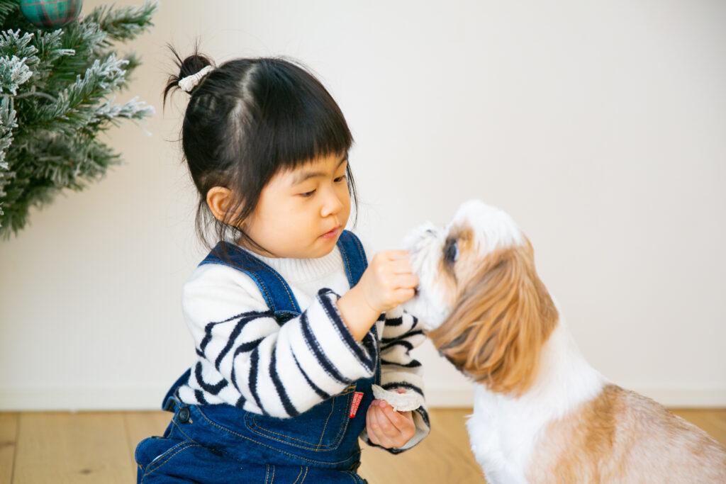 2歳のバースデーフォト撮影レポートスタート〜ご自宅撮影〜