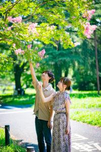 【東京】昭和記念公園2020年ひまわりでの撮影会|aiphoto_you
