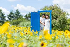 【東京 昭和記念公園】ひまわりの中でのマタニティフォト