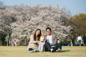 ペットと桜と菜の花と一緒に残すマタニティフォト 見晴公園